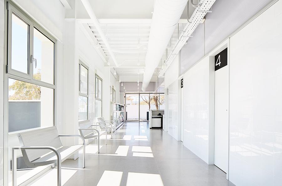 Hospital Veterinario Canis Mallorca Abierto 24 Horas